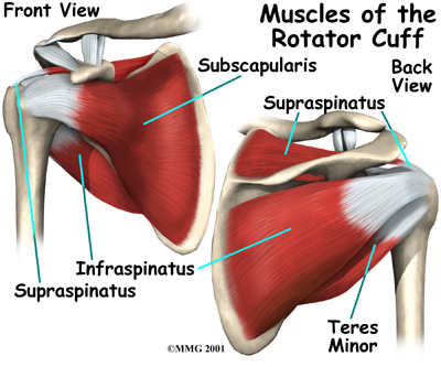 Exercises for strengthening your Rotator Cuff