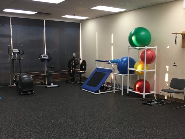 physical therapists schaumburg