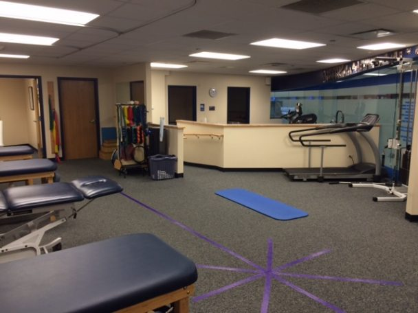 physical therapists millenium station chicago