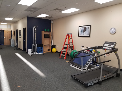 physical therapists brickyard chicago