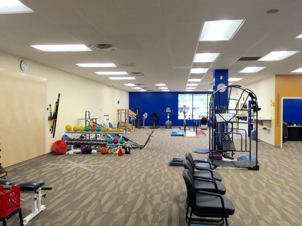 physical therapy in hillsdale, MI
