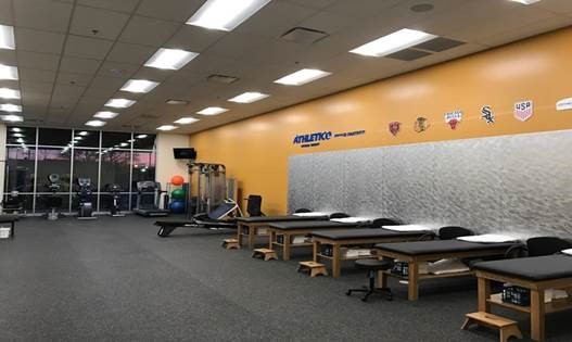 physical therapy mckinley park chicago