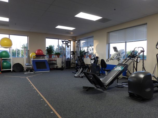 physical therapists naperville
