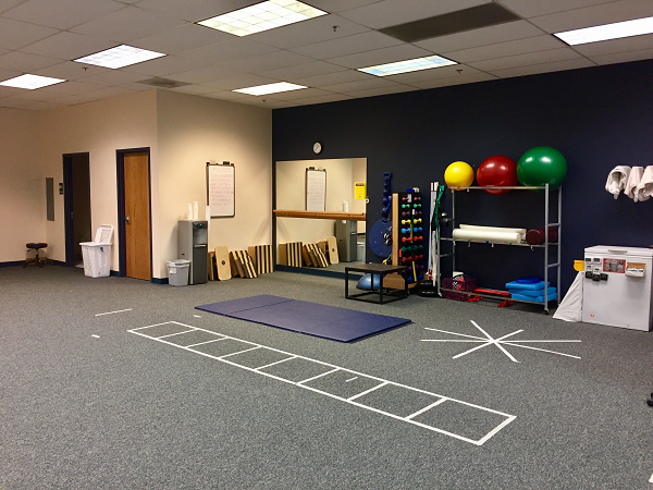 physical therapy buffalo grove