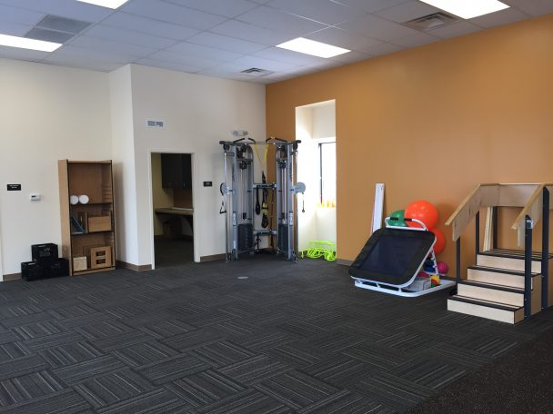physical therapy in Plymouth, MI