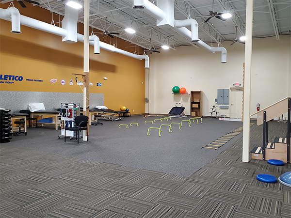 physical therapy westland MI